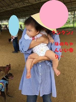 兵庫3 (12)