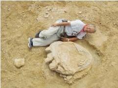 最大級の恐竜足跡no1