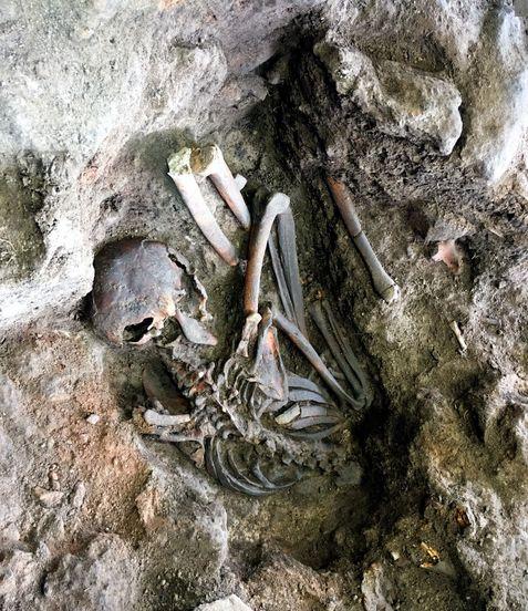 8300年前の埋葬人骨を発掘 縄文人の生活実態解明へ:朝日新聞デジタル