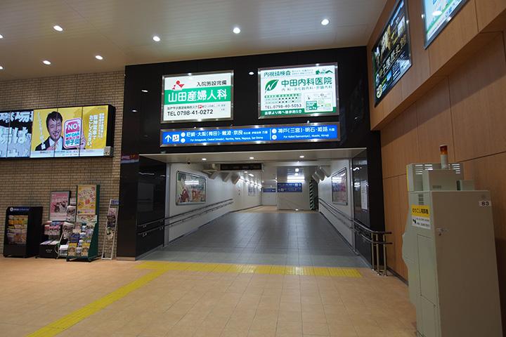 20160403_koshien-18.jpg