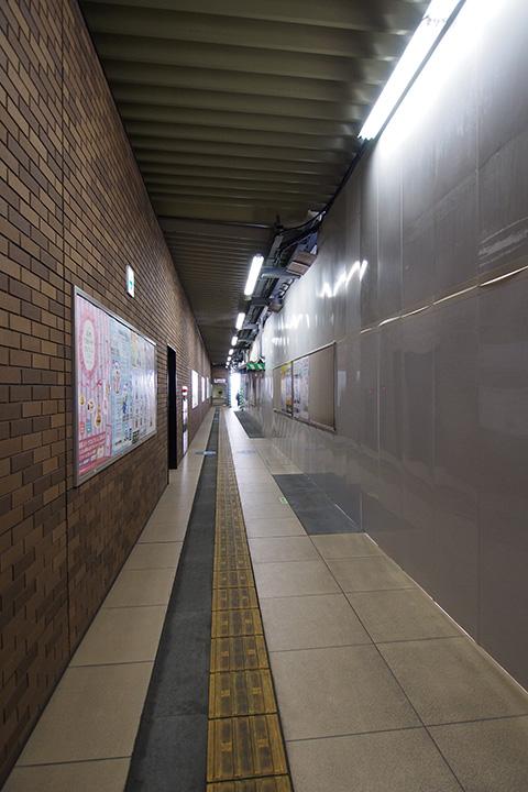 20160410_setagaya_daita-23.jpg