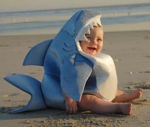 baby_jaws.jpg
