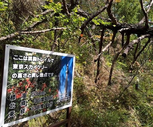 地附山トレイル (3)