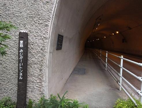浅川ダム湛水 (3)
