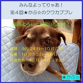 2016★かぶ☆さんプレ企画バナー02