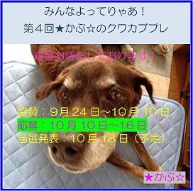 2016★かぶ☆さんプレ企画04