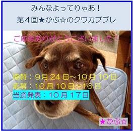 2016★かぶ☆さんプレ企画05