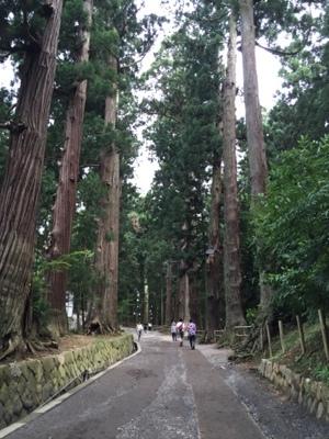 hiraizumi1.jpg