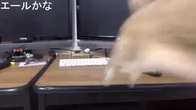 ジャンプ!!②