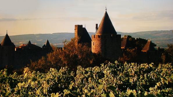 20160612 Carcassonne 21cm DSC09837