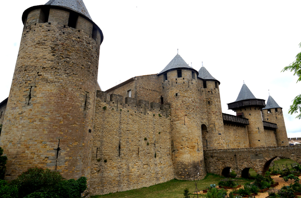20160611 Carcassonne 21cm SC00681