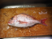 鯛の漬け丼t01