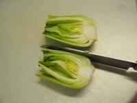 鶏むね肉と青梗菜の香味炒t03