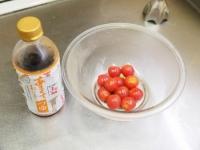 トマトの冷製パスタt14