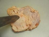 鶏もも肉とキャベツのフライパンt01