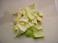 野菜たっぷりそーめんチャンプル01