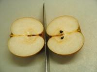 クコの実と梨のフルーツブランデ02