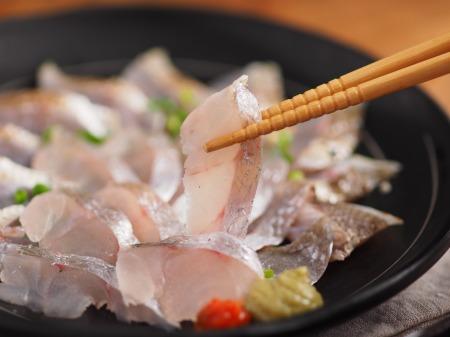 イシモチの刺身、炙り、湯霜20