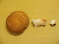 砂肝とキノコの高菜炒め06
