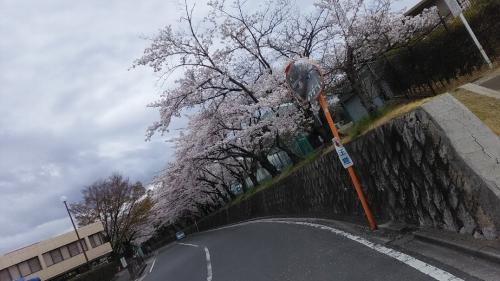 16-04-03_01.jpg