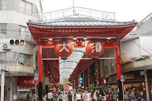 oosushoutengai00-thumbnail2.jpg