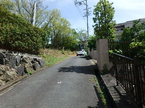 P4220128.jpg