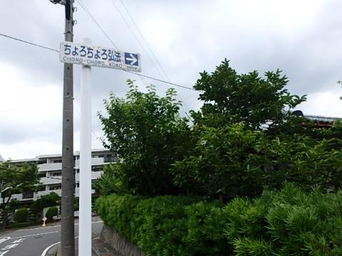 P6140116.jpg