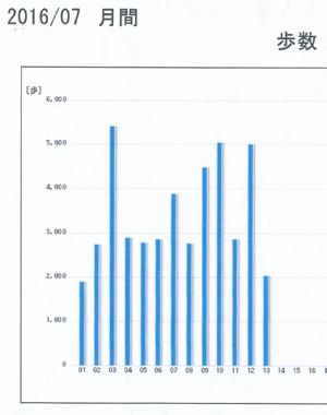 歩数計グラフblog01