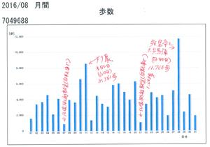 8月分歩数計blog01