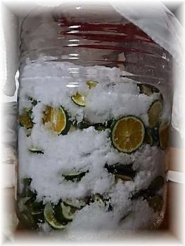 発酵ジュース