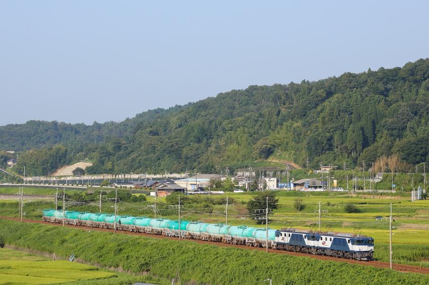 6883-mizunami.jpg
