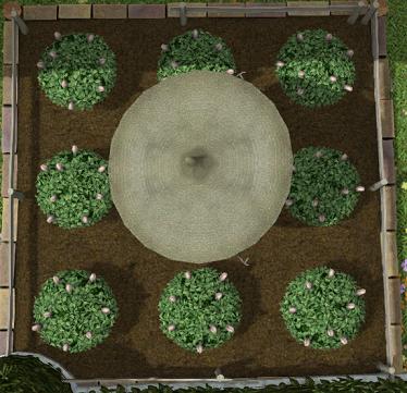 ハウジング畑