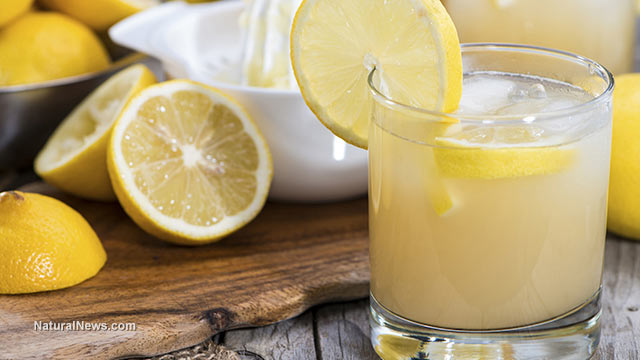 Lemons-Lemonade-Drink-Glass.jpg