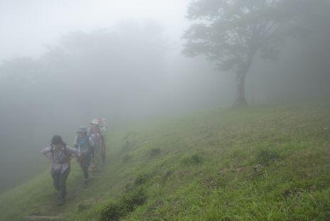 霧の鍋割山