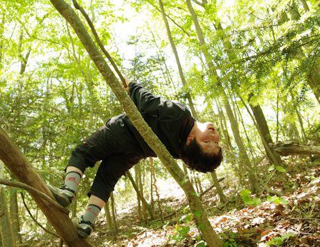 木登りマコ