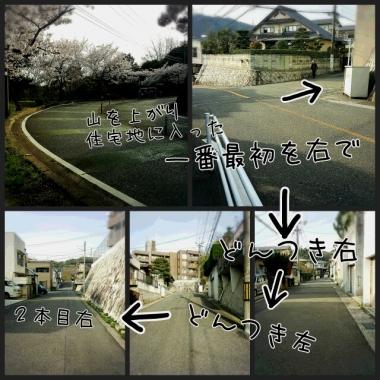 PhotoGrid_1460087496504.jpg