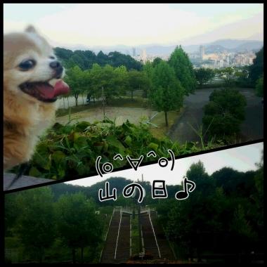 PhotoGrid_1470917320661.jpg