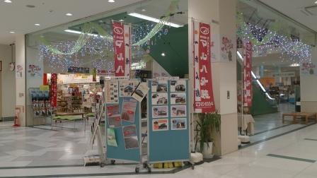 フジグラン東広島外装・リフォーム相談会