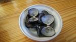 よしかわ シジミの貝殻 16.8.31