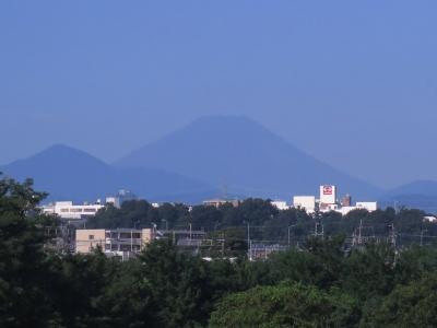 H280826富士山見えた-s