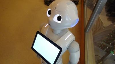 robott-160415.jpg