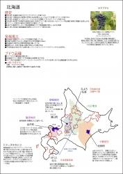 2016北海道書き込み