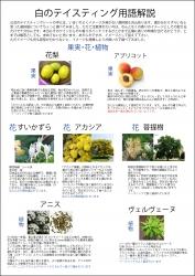 白(果実・花・植物)