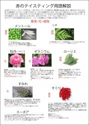 赤(果実・花・植物)