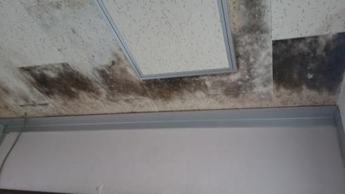 高中天井漏れ