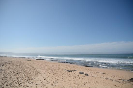 南アフリカ ジェフリーズベイ散歩(10)