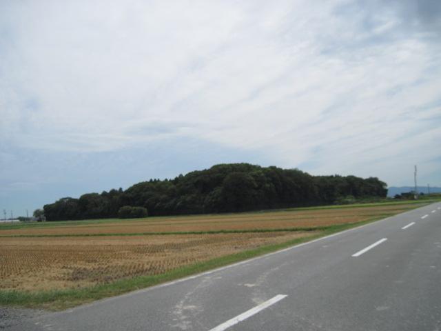 hatazo01