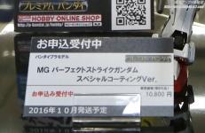 ガンプラEXPO ワールドツアージャパン MG パーフェクトストライクガンダム スペシャルコーティングVer.06