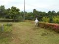 草刈0602 (3)