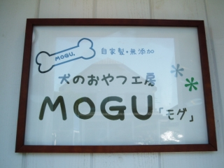 2016_0921mogu0018.jpg